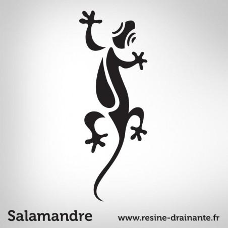 Motif salamandre