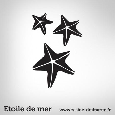 Motif étoile de mer