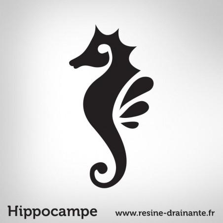 Motif Hippocampe